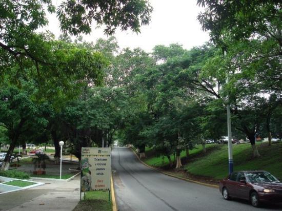 Bilde fra Villahermosa