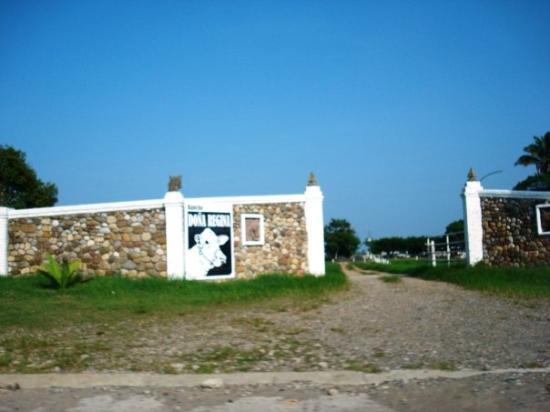 Tuxpan, เม็กซิโก: ah, es un cementerio de vacas entonces !   jajaa...