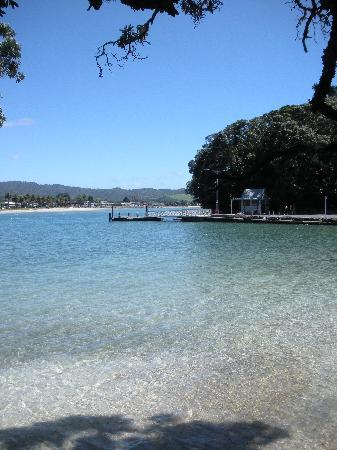 The view from the beach at the bottom of the Ferry Landing Lodge garden
