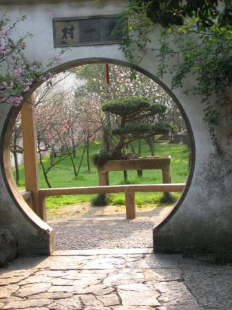 Humble Administrator's Garden: Moongate frames bonsai.