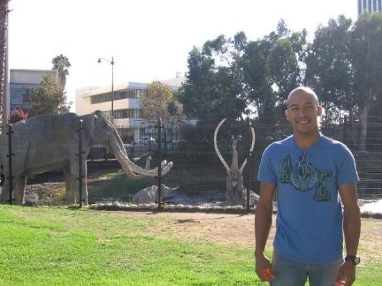 La Brea Tar Pits and Museum: @ the Tar Pits in Hollywood