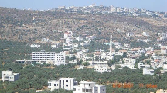 Ramallah: Turmus-ayya. الحاره الشرقيه في ترمسعيا وتظهر عمارة وائل نائل في الصوره