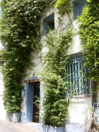 Old City,Marbella. Trees and plants grow everywhere!