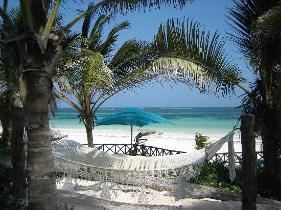 Diani Blue: Asha Cottage