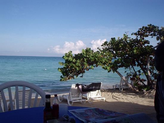 Shields Negril Villas: what you see is what you get