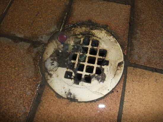 Bayview Wildwood Resort: Drain in the indoor pool area