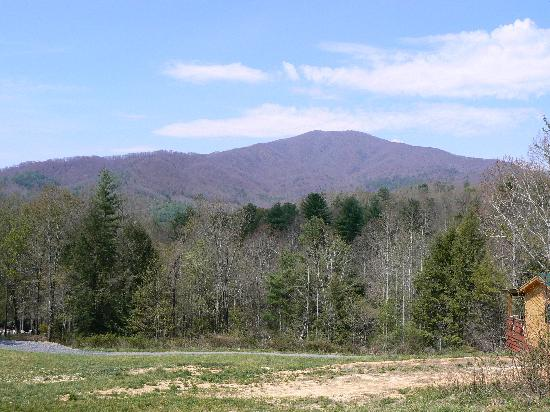 Hot Springs Log Cabins: Cabin View