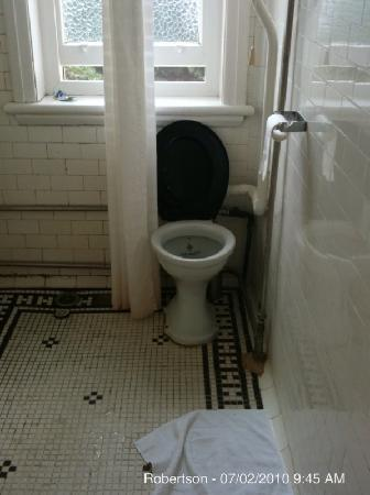 The Robertson Hotel: The toilet and shower