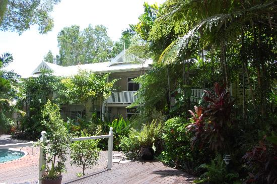 Palm Cove Tropic Apartments: General Pool Area