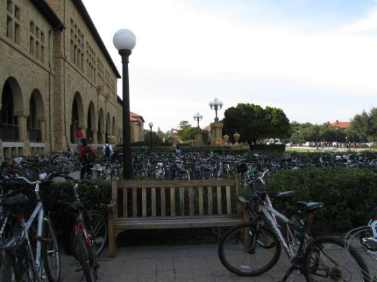 Palo Alto, Kalifornia: Stanford University