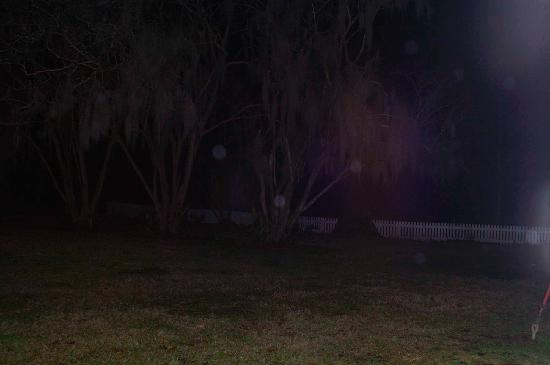 Saint Francisville, LA: Orbs at the Lake