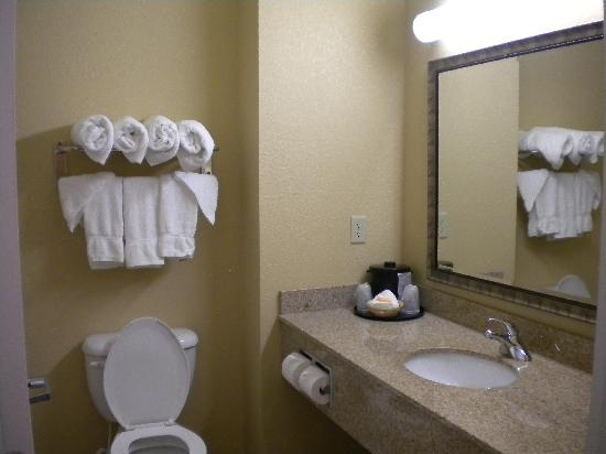 La Quinta Inn & Suites Mobile - Tillman's Corner: bathroom in room 106
