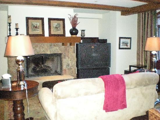 Snow Cloud Lodge: fireplace