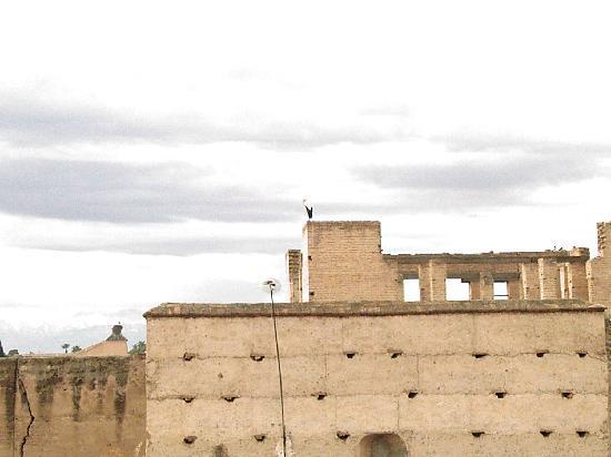 Riad Assalam : Vu sur palais Badi avec les cigognes