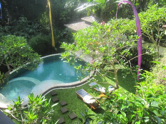 Villa di Abing: Pool from diniing aare