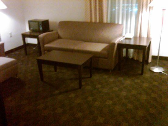 Dayton Grand Hotel: Jr Suite Sitting Room with pull out couch