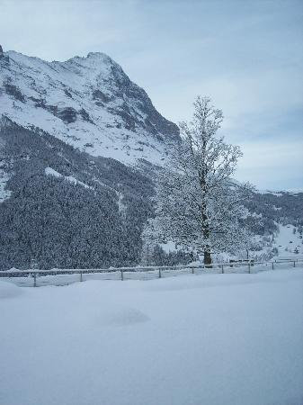 ‪‪Sunstar Hotel Grindelwald‬: the Eiger-north wall, picture taken from the breakfast area‬