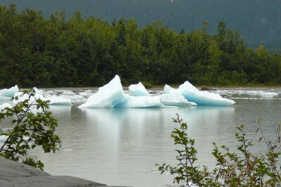 The Glacier Express Blue Bus: floating ice at Mendenhall