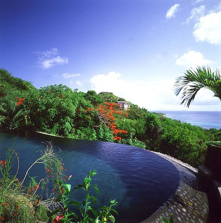 Mustique: Firefly's fabulous pool