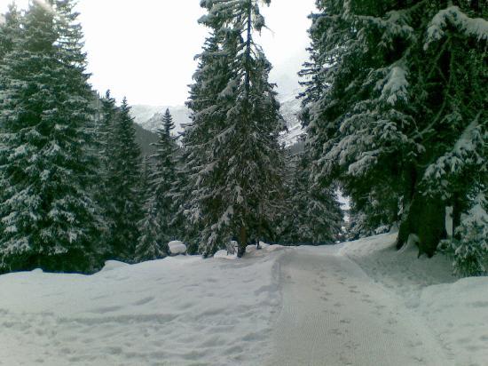Hotel Montana : Walking down to Lech from Obrerlech