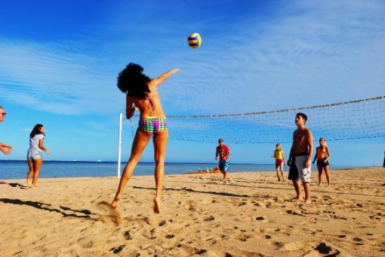 Premier Le Reve Hotel & Spa (Adults Only): Volleyball