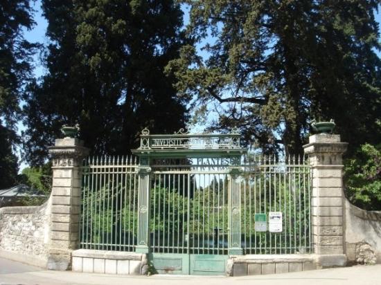 L 39 entr e condamn e du jardin des plantes picture of for Plantes du jardin