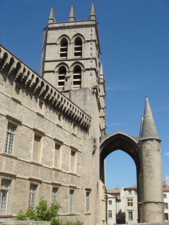 Cathédrale Saint-Pierre : Saint-Pierre
