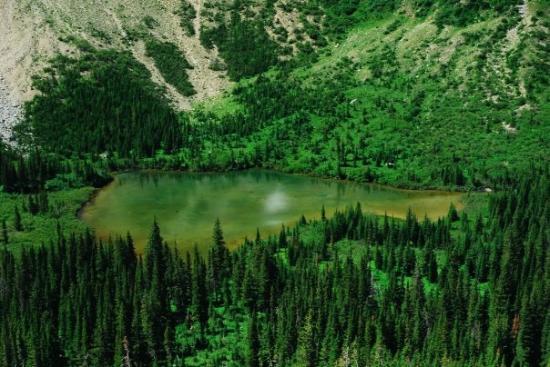 Crypt Lake Trail Photo