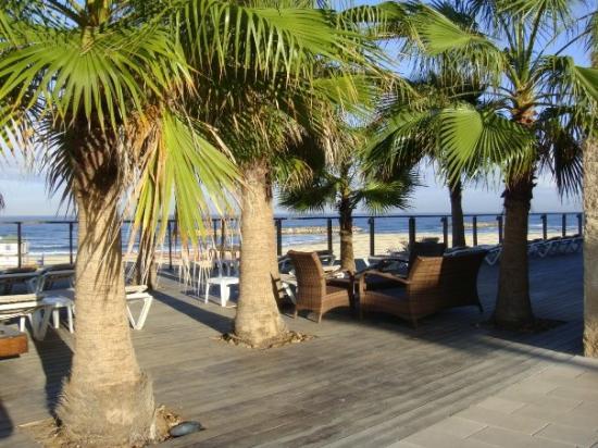 Dan Accadia Hotel Herzliya Photo