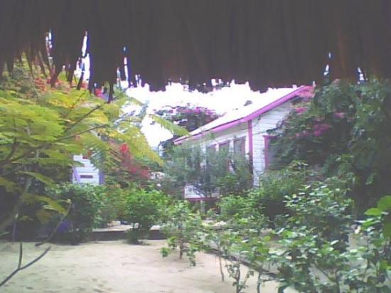 Ranguana Lodge: Butterfly Fish Cabin