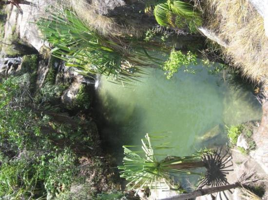 La tortue de loda picture of ifaty toliara province tripadvisor - Picine naturelle ...