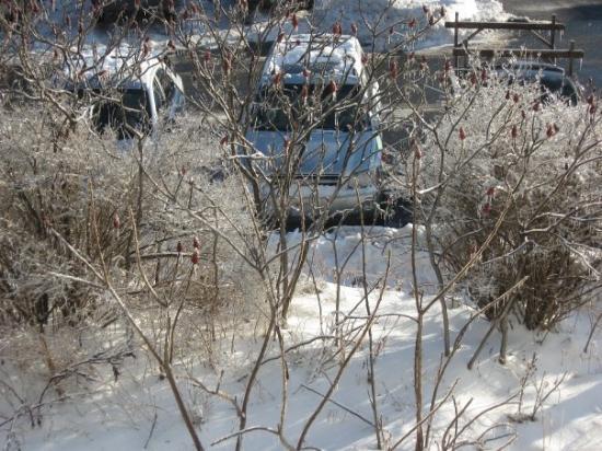 Hampton Inn Rutland/Killington: Estacionamento do Hotel em Rutland, Vermont