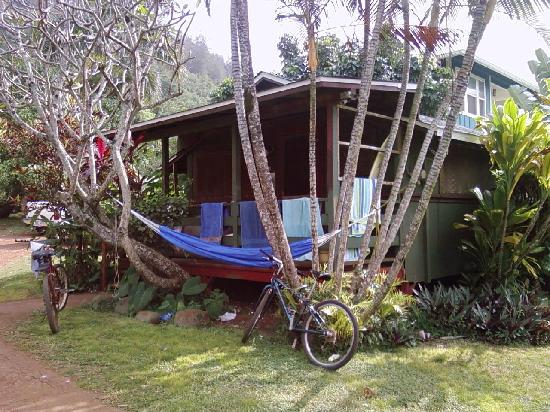 Backpackers Vacation Inn and Plantation Village: typical plantation village cabin exterior