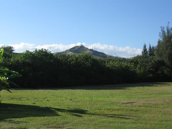 The Lodge at Keneohe Bay : Green grass all throughout property,