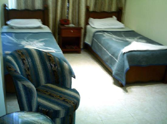 Orient Gate Hotel : Twin Room