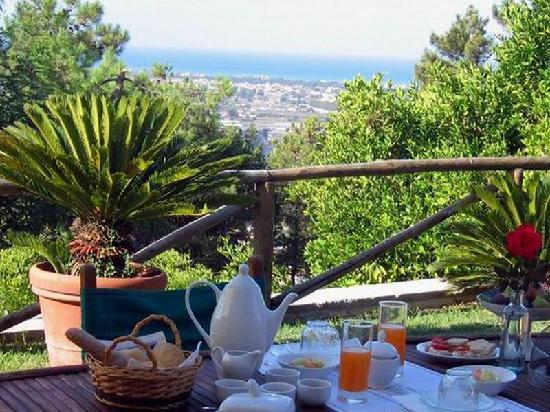 Villa Oliveto Bed & Breakfast: breakfast