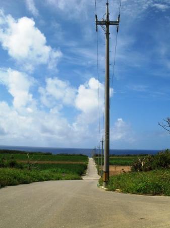 波照間の道 - Picture of Hateruma-jima Taketomi-cho, Yaeyama-gun - TripAdvisor