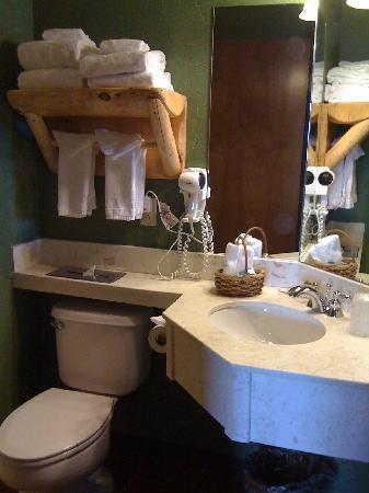 Stoney Creek Hotel & Conference Center - Moline: Bathroom