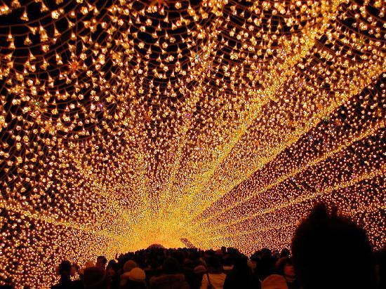 Nabana no Sato: 光のトンネル
