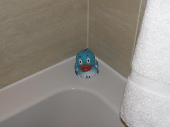 Apex London Wall Hotel: The blue Apex duck in its natural habitat!