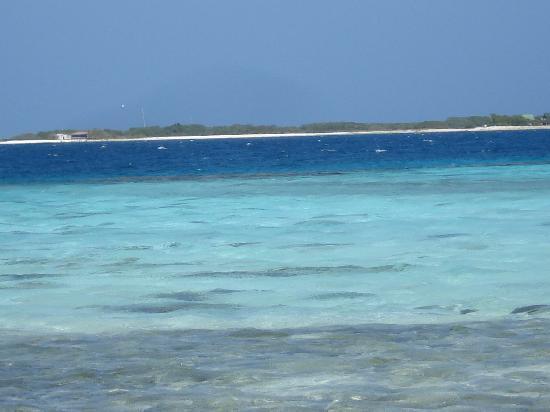 Posada La Langosta: mare dei Caraibi