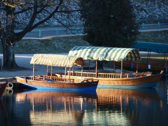Pension Pletna: vista sul lago: le pletna