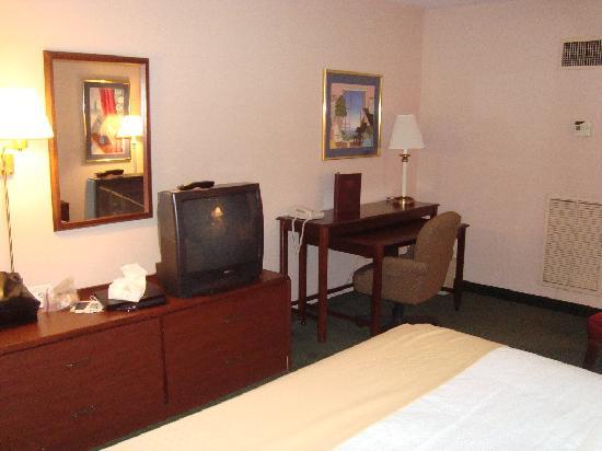 Holiday Inn Cincinnati Airport: Room