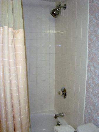 Holiday Inn Cincinnati Airport: Bathroom