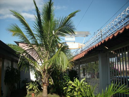 Hotel Coconut House: Außenansicht