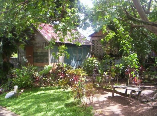 Cottage in Charlotteville