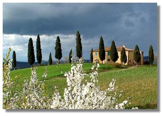 Пиенца, Италия: Farm house near Pienza