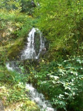 Cascata delle Marmore: La Cascata.