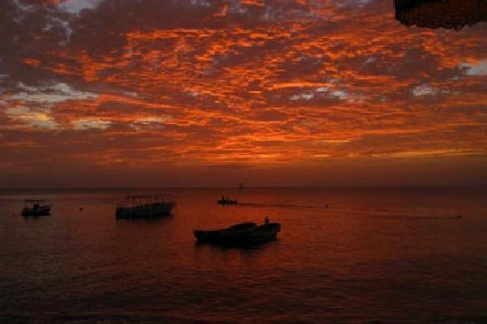 Anse Chastanet : Vivid Sunset
