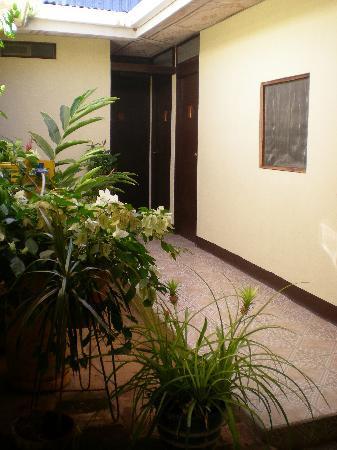 Hotel Casa La Luna: Back Patio with Rooms